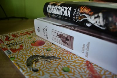 Przegląd literatury