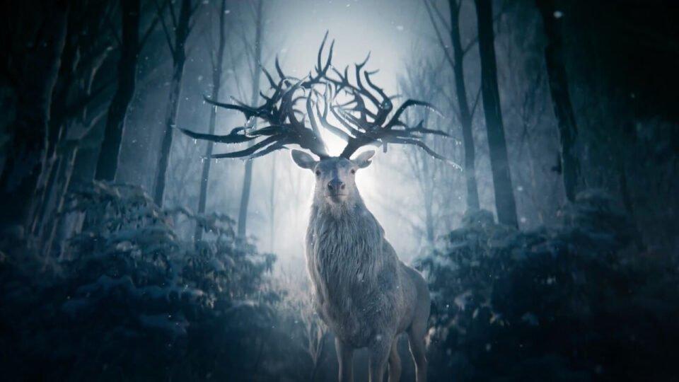 Cień i kość - jeleń
